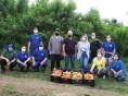 Agricultor doa mais de 10 toneladas de pêssegos