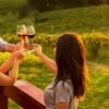Dia do Vinho Brasileiro: evento chega renovado à 10a edição