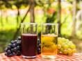 Grande Prova Sucos de Uva do Brasil chega a sua 5ª edição