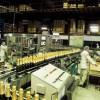 Exportações brasileiras de vinhos, espumantes e suco de uva crescem 17,3% em valor em 2017