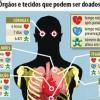 Caxias do Sul promove 19ª Semana Municipal de Doação de Órgãos e Tecidos