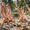 BBQ Festival movimentou Caxias