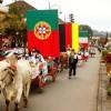 Desfile de Carretas acontece neste sábado