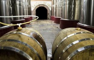 Vinícola gaúcha entra no mercado da cerveja artesanal com fábrica no meio da propriedade