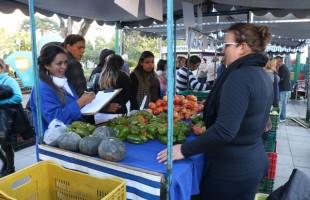 Agricultores do Ponto de Safra doam mais de nove toneladas ao Banco de Alimentos