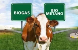 Fórum Sul Brasileiro de Biogás e Biometano, com início nesta semana, debate futuro em que será possível produzir o próprio combustível