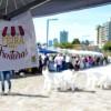Feira Sem Fronteiras é no próximo domingo na Praça das Feiras