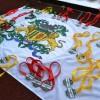 Seis estudantes caxienses são convocados para a etapa nacional das Paralimpíadas Escolares