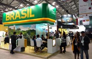 Vinícolas brasileiras aportam na ProWine China para aumentar presença no mercado asiático