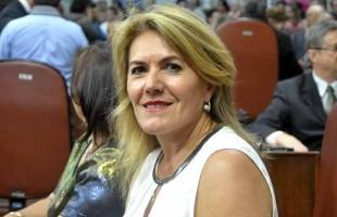 Executivo deverá esclarecer andamento do Floresça Caxias