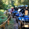 Alpen Park é opção para quem busca aventura em contato com a natureza