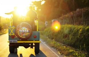 Rota turística de Veranópolis conduz visitantes pelas origens do cultivo da maçã no Brasil