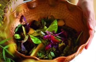 Na culinária, Salada de abobrinha