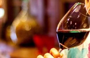 Descontos especiais e diversidade de atrações encerram o Dia do Vinho Brasileiro