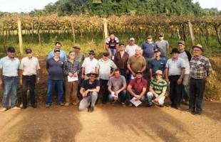 Fruticultores de Serafina Corrêa recebem orientações para controle de pragas e doenças
