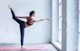 Ganapati Centro de Estudos e Práticas de Yoga em parceira com o Instituto Sérgio Lovato realizam 1ª Mostra Regional de Experiência em Yoga na Educação