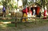 Encanto de Natal promove várias atrações neste fim de semana
