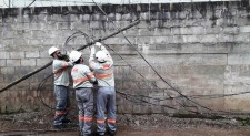 Gatos | RGE encontrou mais de 2,3 mil ligações irregulares de energia em Caxias do Sul no ano passado