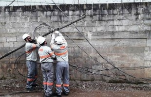 Gatos   RGE encontrou mais de 2,3 mil ligações irregulares de energia em Caxias do Sul no ano passado
