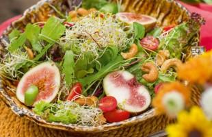 Na culinária | Salada de folhas e biri-biri