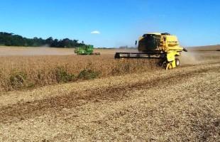 Em uma semana, duplica a área de soja colhida no Estado
