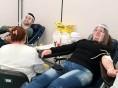 Romaria Pela Vida teve 80 agendamentos para doação de sangue