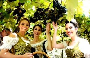 Festa Nacional da Uva avaliará com Conselho Consultivo pedido do Convention & Visitors Bureau para manter o evento na data estipulada