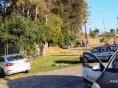 Operação Dispersão: Praças e parques lotaram mais uma vez neste domingo