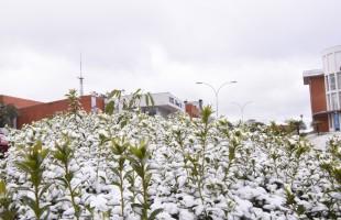Neve na serra   Universidade de Caxias do Sul foi um dos palcos da neve