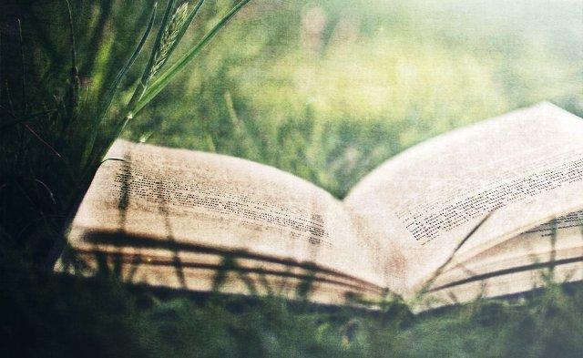 278462__open-book_p