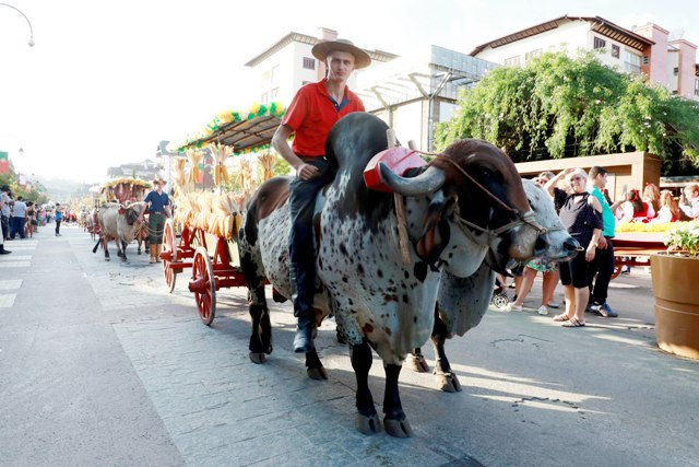 Desfile de Carretas.