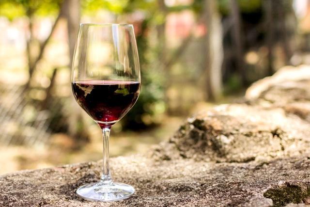 Pela primeira vez, produtores de vinhos orgânicos participarão, com estande coletivo, da Wine South America - Crédito Dandy Marchetti/Banco de Imagens Ibravin