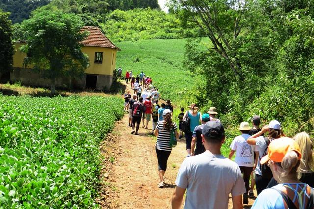 Projeto_Caminhadas_na_Natureza_ganha_etapa_regional_-_Foto_Carina_Venzo_Cavalheiro