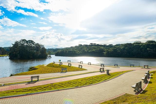 Parque das Araucárias - Mateus Argenta (21)